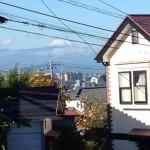 二階個室の窓からの眺め(富士山)